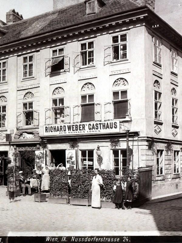 Wien 1899, Gasthaus zum weißen Löwen