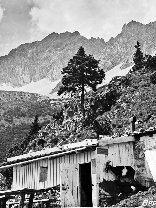 Innsbruck 1930, Bodensteinalm