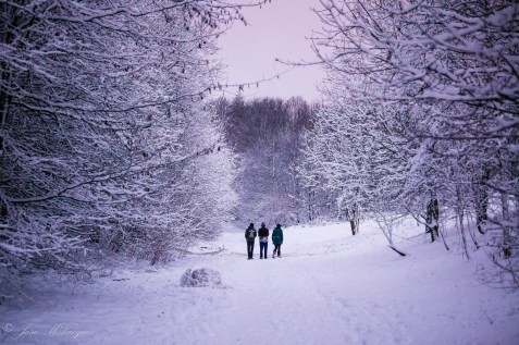 Three young people walking in Ponderosa Park, Sheffield.