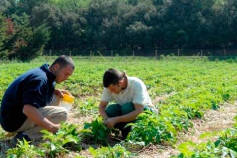 La importancia de emprender en España. Informe GEM 2014 y emprendimiento social.