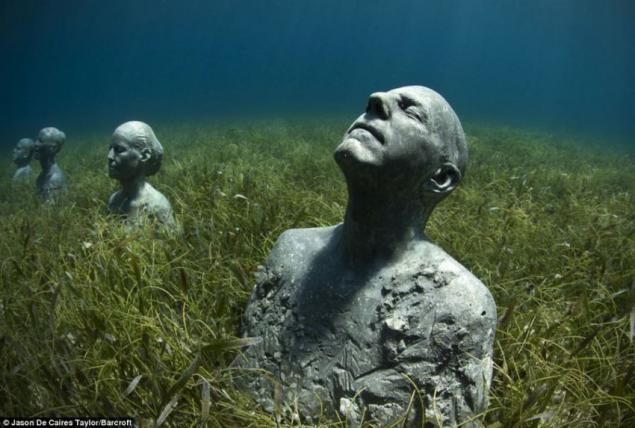 algas escultura