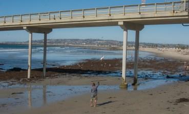 Credit, Joseph Lapin, Ocean Beach