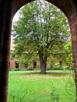 Karmeliterklostret cloister