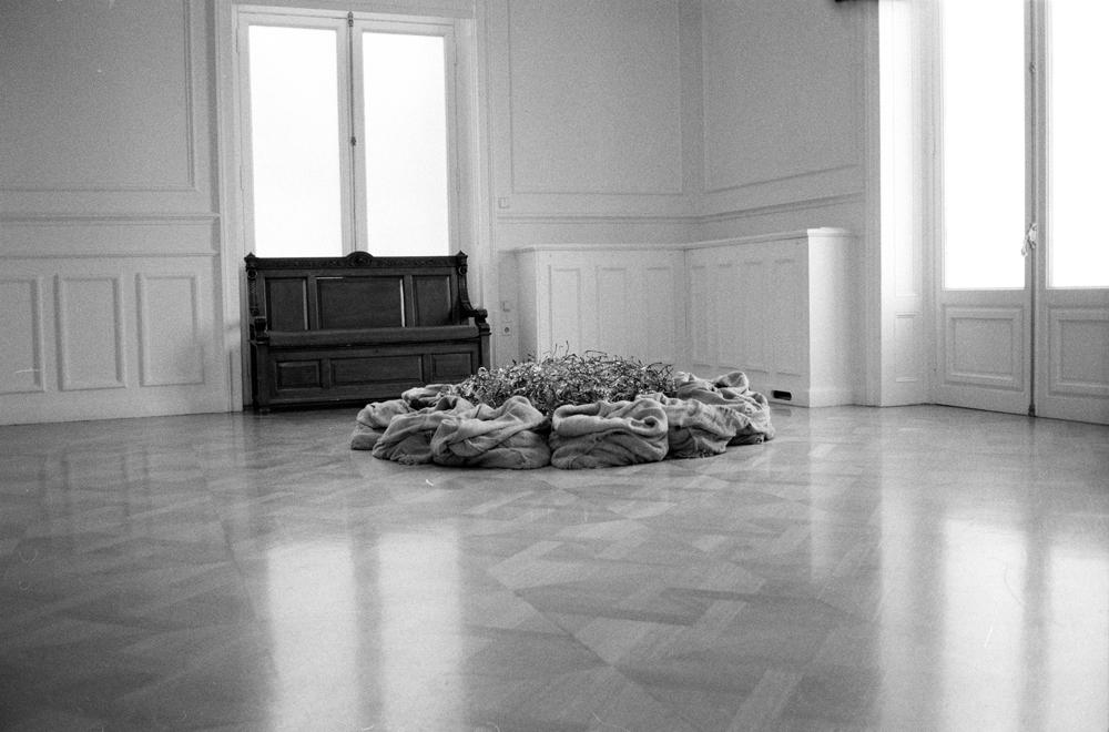 Jannis Kounellis | Γιάννης Κουνέλλης (1/6)
