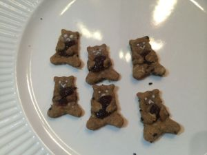 Bear cookies (peanut butter, sesame, oats, cinnamon, nutritious yeast, and dried cranberries).