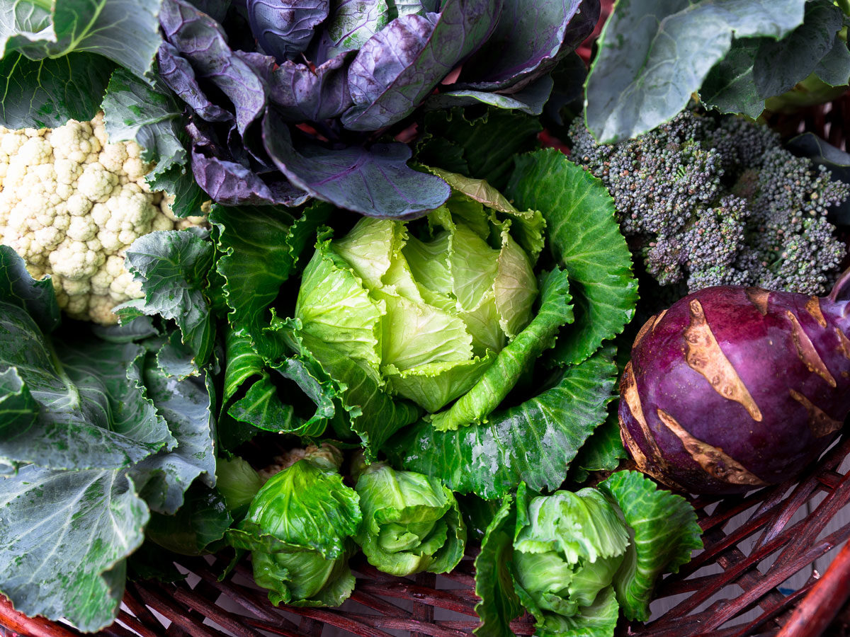 Cruciferous Vegetables Nutritional Value