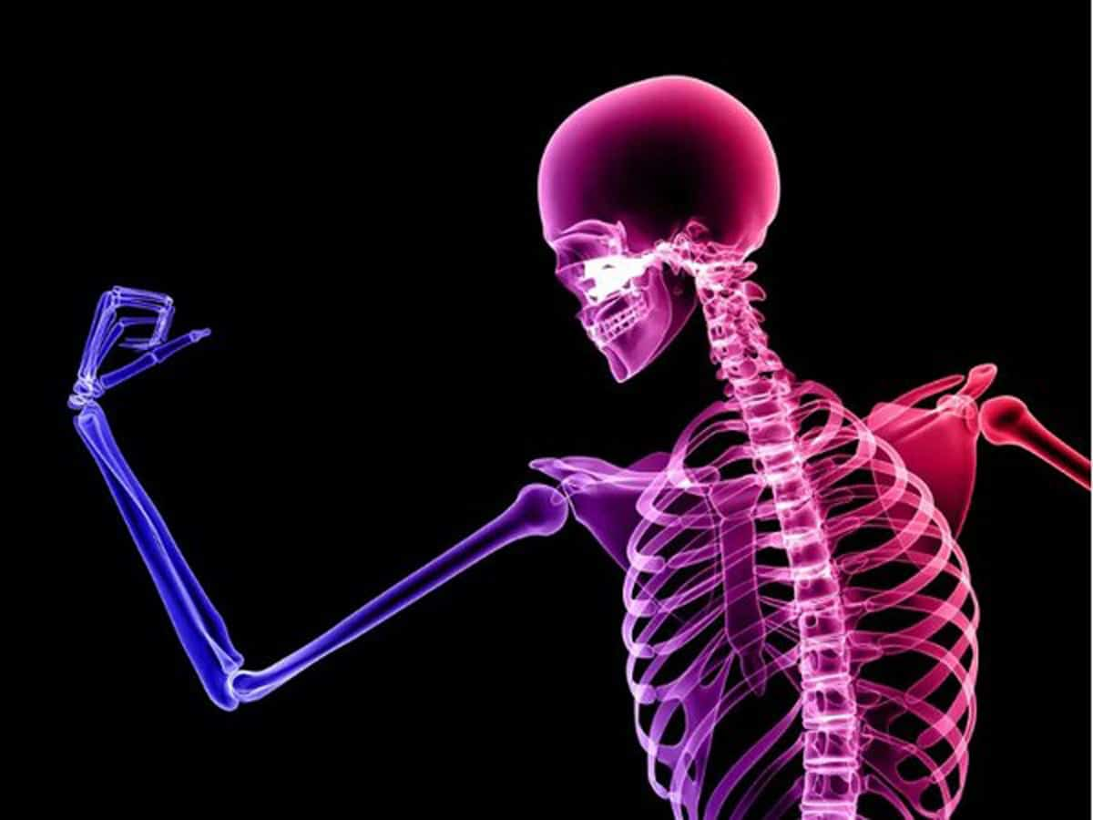 Bone Health | The Secrets of Strong & Healthy Bones » jmexclusives