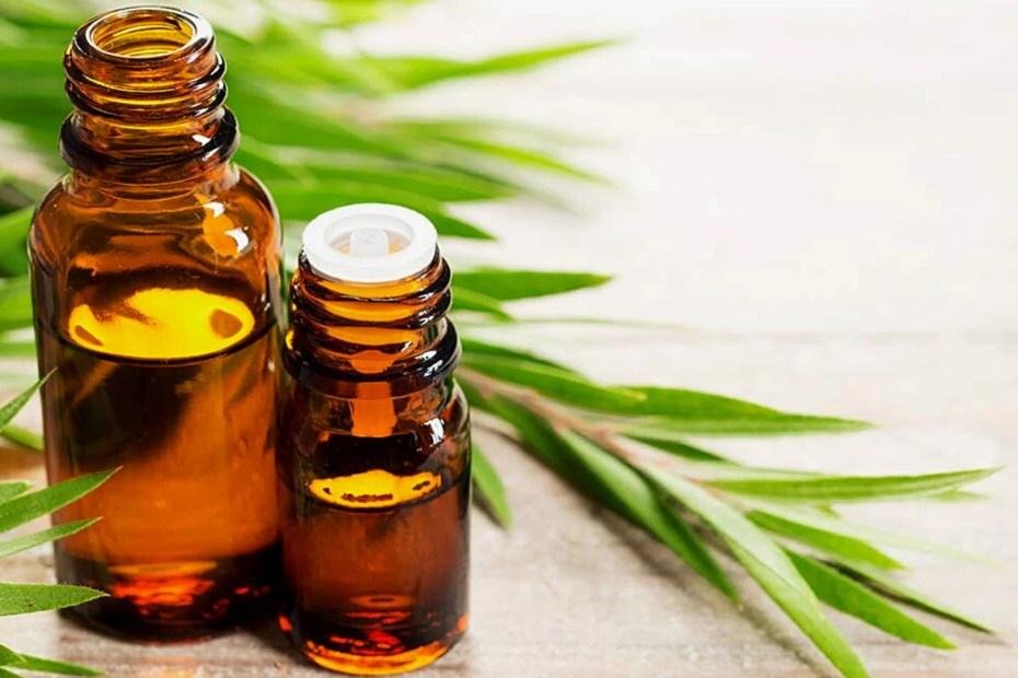 What is Tea Tree Oil?