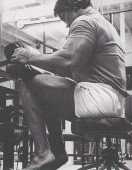seated calf raise exercise