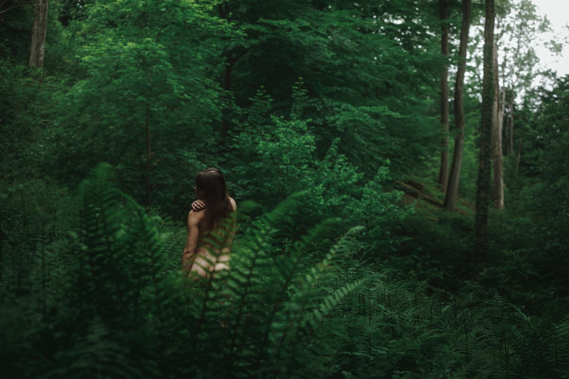 Mél - Forest - v1-photo-foret-nue-artistique-fougere--9