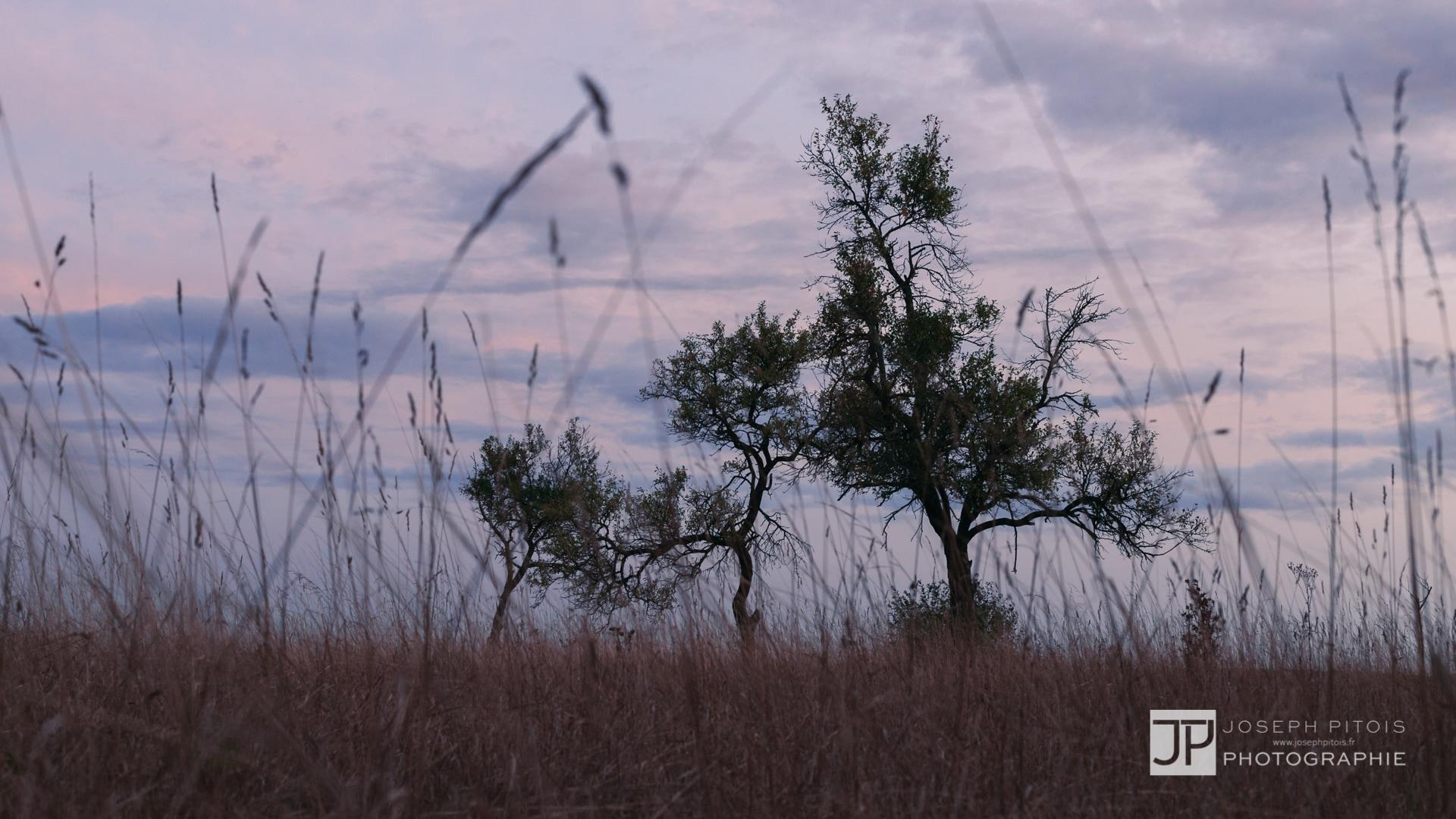 coucher-de-soleil-IMG_3755