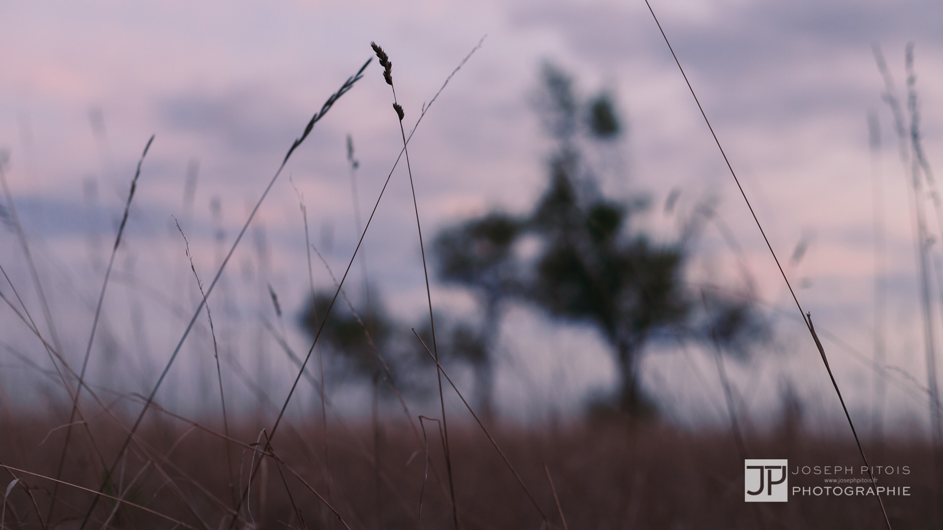 coucher-de-soleil-IMG_3757
