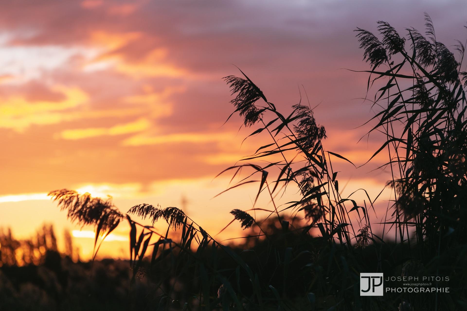 coucher-de-soleil-IMG_3785