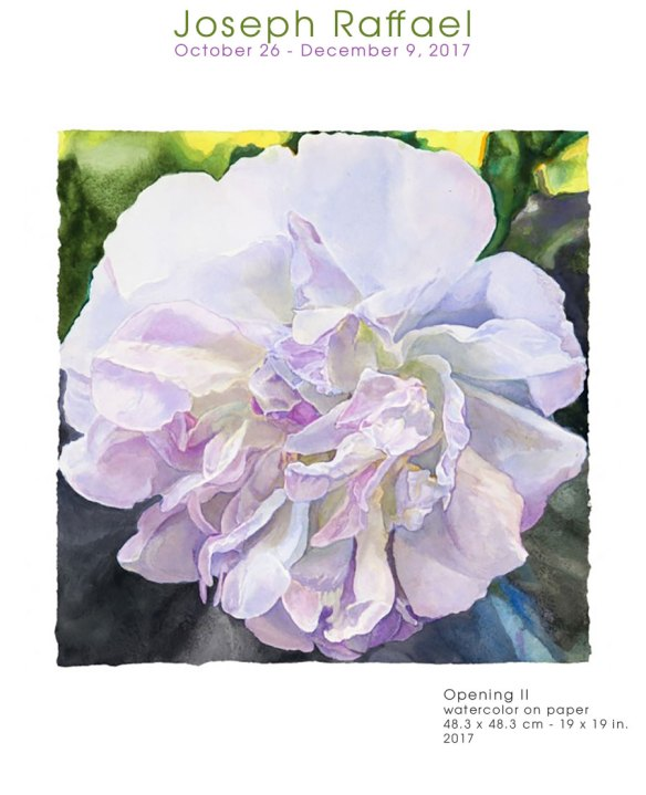 Fine Art Watercolors by Joseph Raffael Exhibition at the Nancy Hoffman Gallery