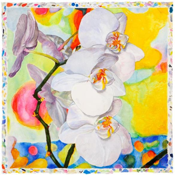 Orchids in Summer