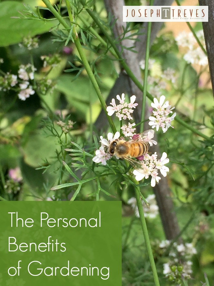 The personal benefits of gardening - it's great for your health, peace of mind, and well being