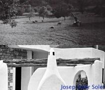 Página 20 de rural libro terminado_new