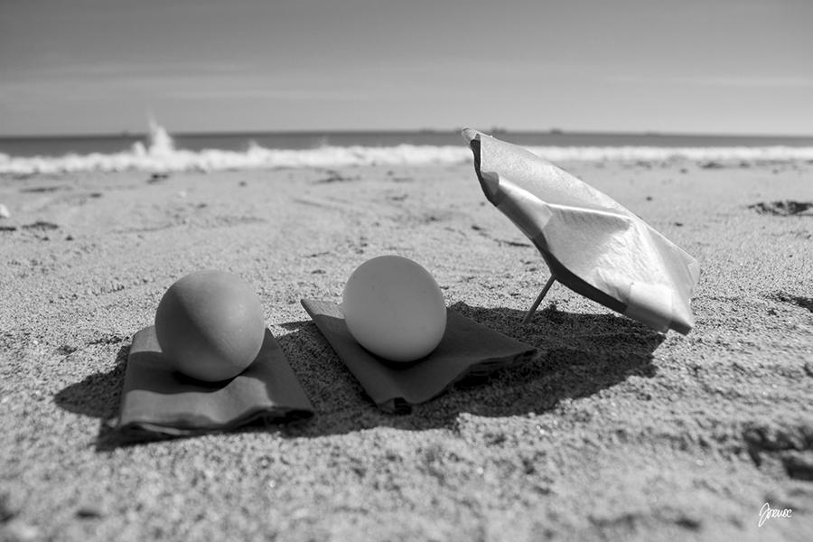 huevos blanco y moreno