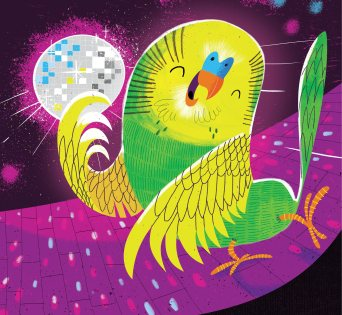 storytime-budgie-boogie-cover-detail1-josh-cleland