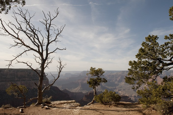 Grand Canyon South Rim - Josh Edenbaum Photography