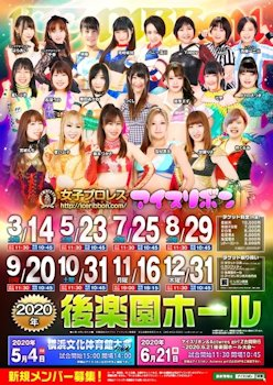 Ice Ribbon 3/14 Poster