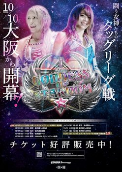 Stardom Tag League 2020 Banner