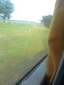Which goes through Bulacan and Pampanga.