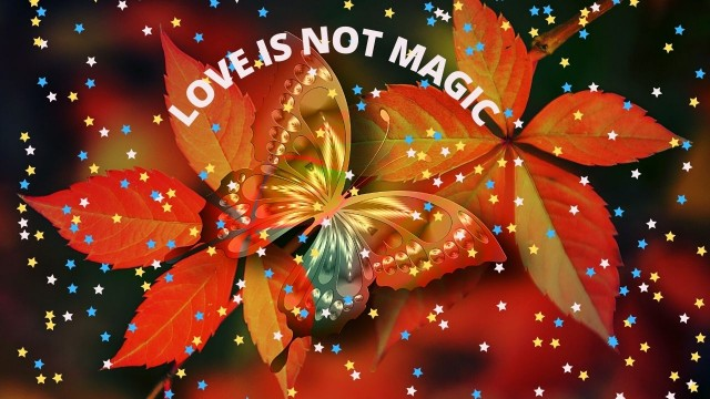 LOVE IS NOT AN ILLUSION