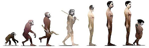 Evolution and Human Contact