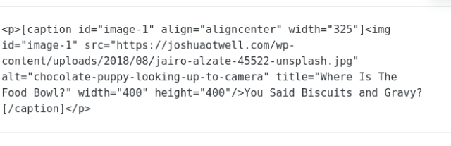 html-wordpress-code-for-image