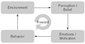 reward environment beliefs emotions behavior