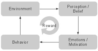 reward environment beliefs emotions behavior