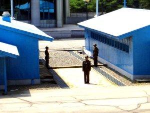 The North Korean Demilitarized Zone (15)