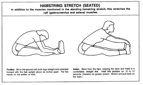 hamstring stretch seated
