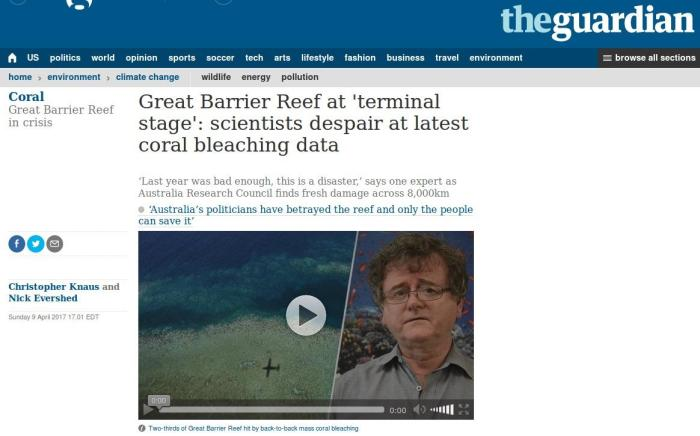 Great Barrier Reef at 'terminal stage'