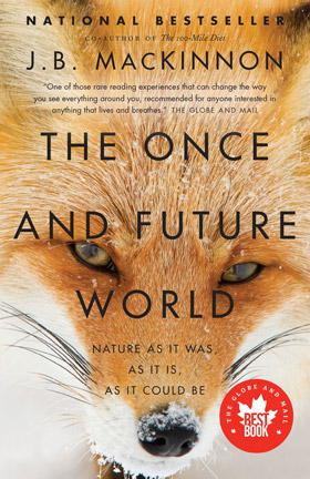 The Once and Future World cover