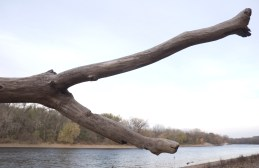 Minnesota State Parks : Fort Snelling Pike Island 14