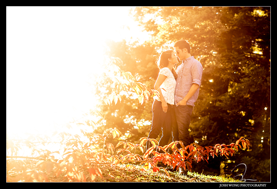 Quarryhill Botanical Garden engagement pictures by SF engagement photographer Josh Wong