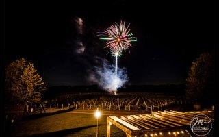 Laurita Winery Wedding Pictures | Sara and Phil | Josh Wong Wedding Photography