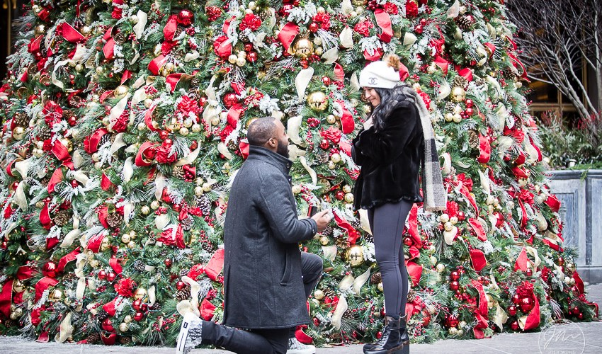 A Christmas Surprise Engagement Proposal at the Lotte New York Palace - New York's Midtown Manhattan Luxury Hotel | Engagement & Proposal pictures by NYC Wedding Photographer Josh Wong Photography