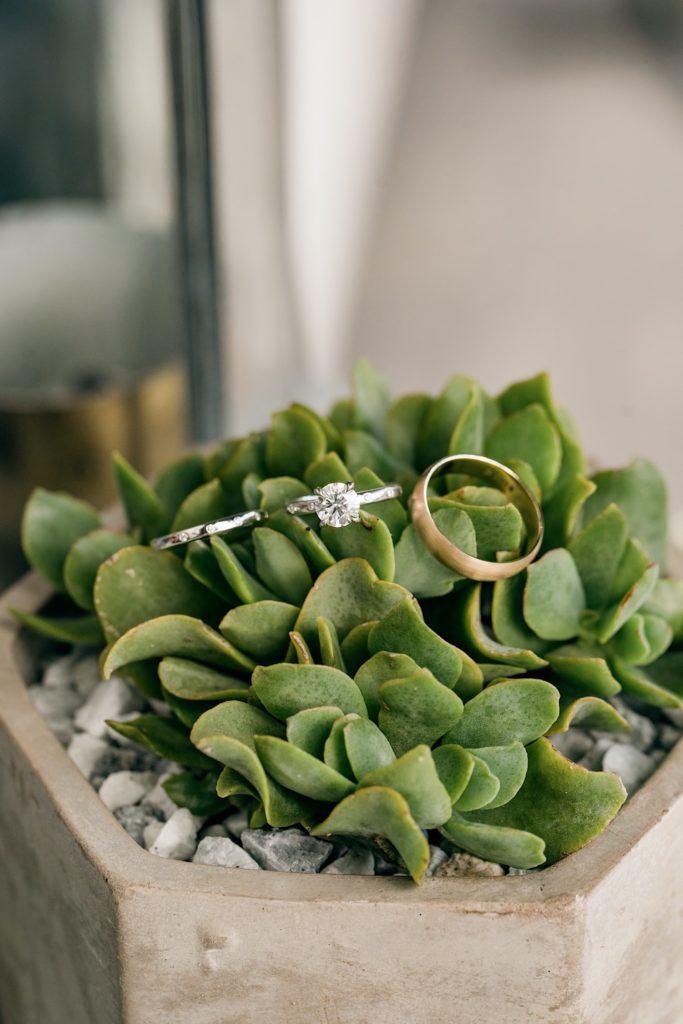Rings Terrain Gardens Micro Wedding Photos