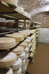 I wish my cheese cellar looked like this. I wish I had a cheese cellar!