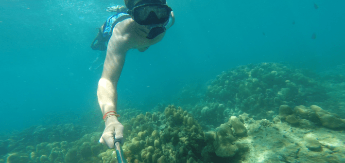 Snorkelling over a coral reef in Koh Phi Phi Island in Thailand in South East Asia.