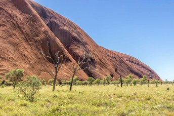 The big red rock of Uluru up close with interesting patterns.