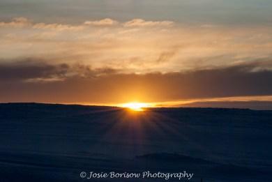 1st Arctic Sunrise of the Year Feb 2011, Photo by JosieB