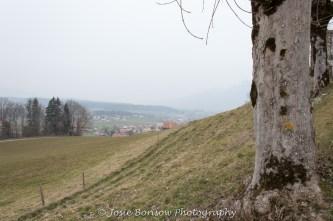 Gruyeres, Photo by Josie Borisow