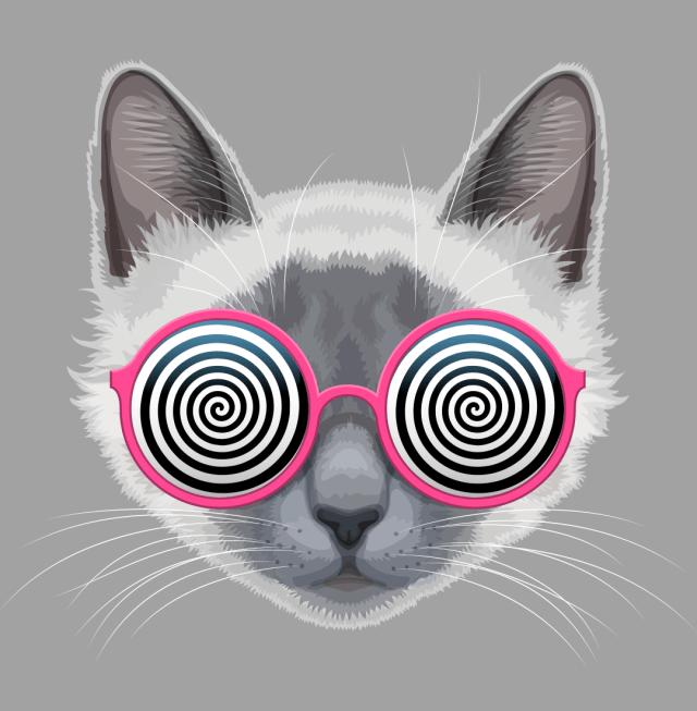 hypnotize, meditation, where am I