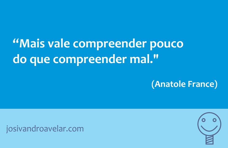 Mais vale compreender pouco do que compreender mal. Frase de Anatole France.