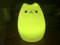 Le chat jaune.