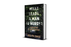 What Leads A Man To Murder book cover